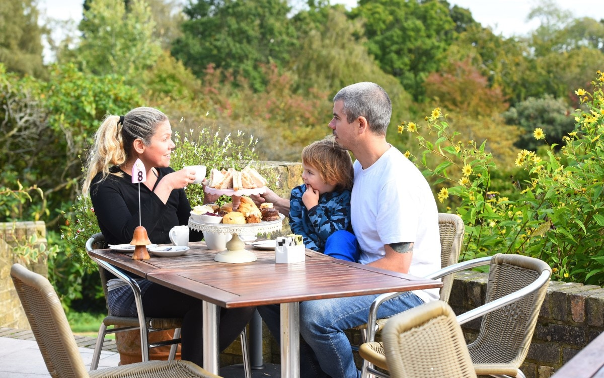 Afternoon tea on the terrace at Furzey Gardens