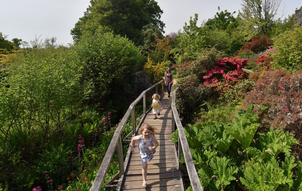 Children running across bridge at Furzey Gardens